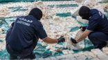 إحباط تهريب أكثر من 8.7 مليون حبة كبتاجون بميناء جدة الإسلامي