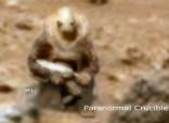 """بالصور.. كائن فضائي """"مسلح"""" يطارد مركبة فضاء على المريخ!"""