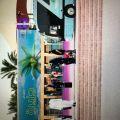 انطلاق فعاليات جزيرة السعادة في ميدان الفروسية …